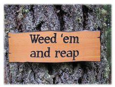 Weed  'em