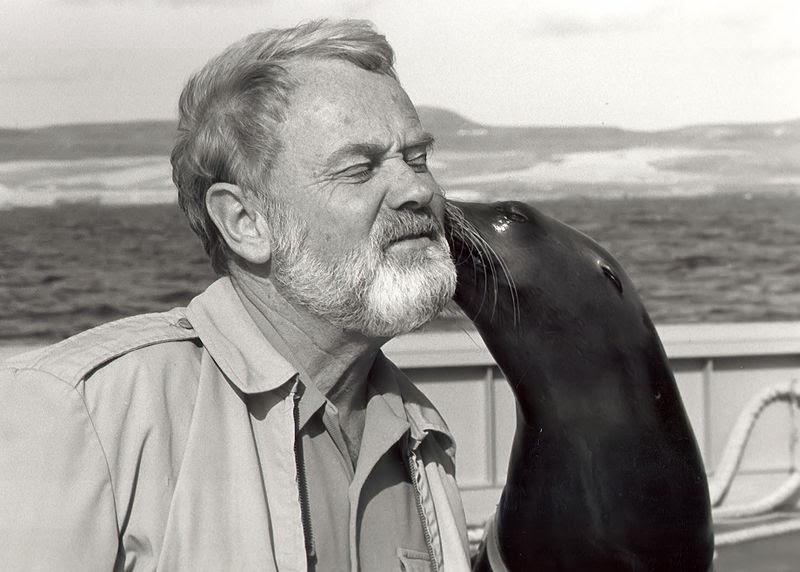 File:GiGi sea lion 1984.jpg