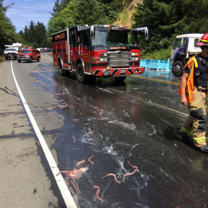 Isto é o que acontece quando um caminhão cheio de peixes-bruxa tomba ao seu lado na estrada 04
