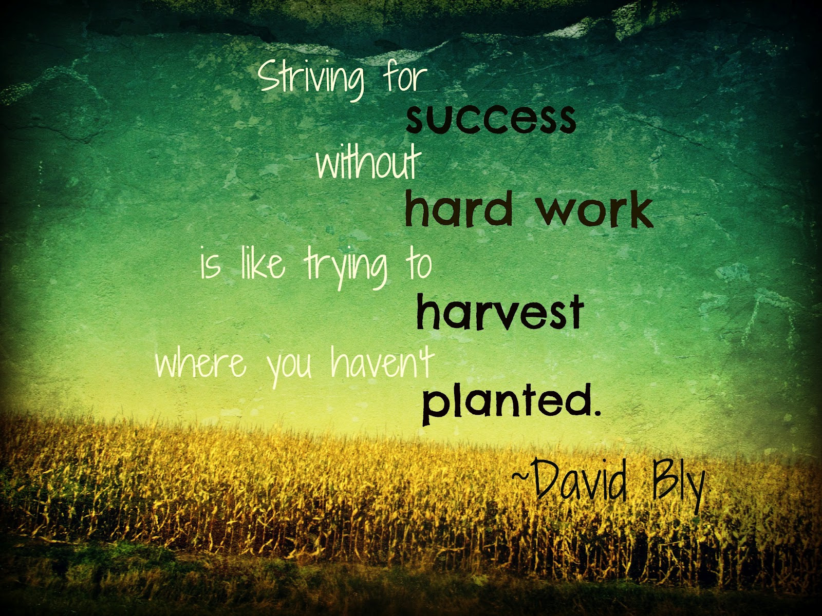 Quotes About Hard Working 417 Quotes