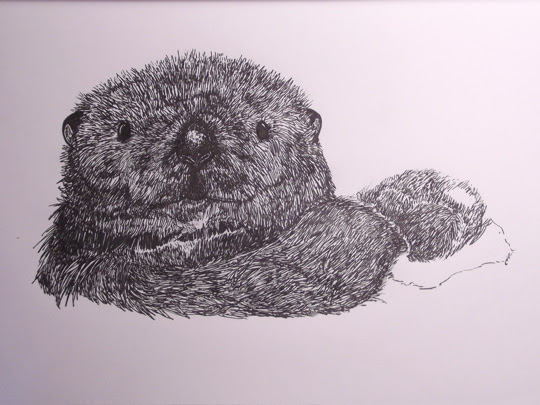 otterific close up
