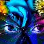 127661_Papel-de-Parede-Olhos-de-borboleta_1280x800 (1)