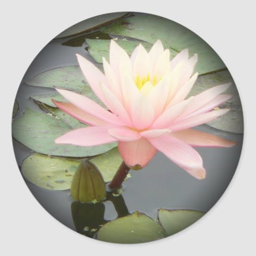 Light Pink Water Lily Fade to Black Round Stickers sticker