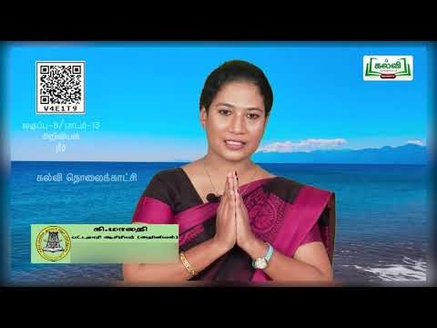 8th Science நீர் அலகு 13 பகுதி 1  Kalvi TV