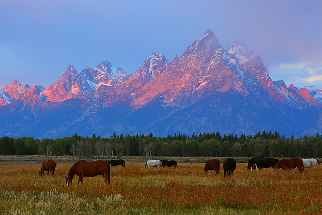 IMG_7603 Sunrise, Grand Teton National Park