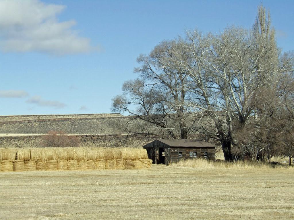 The Ol' Barn