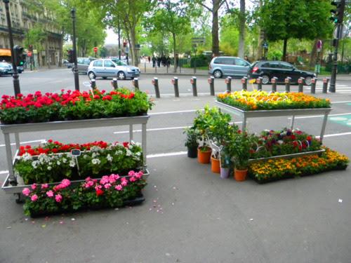 paris çiçekçi kendin dik