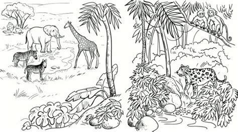 safari coloring pages bestofcoloringcom