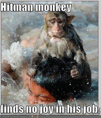 Hitman Monkey Drowns Boy