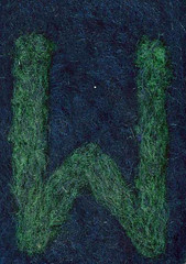 Alphabet ATC or ACEO Available - Needlefelted Letter W