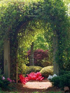 through the garden gate on Pinterest