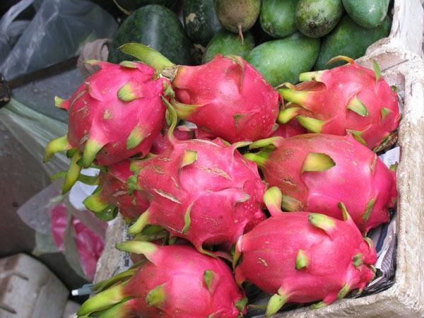 """perierga.gr - Τα πιο παράξενα """"ιθαγενή"""" φρούτα του κόσμου!"""