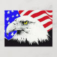 Bald Eagle and American Flag Postcard