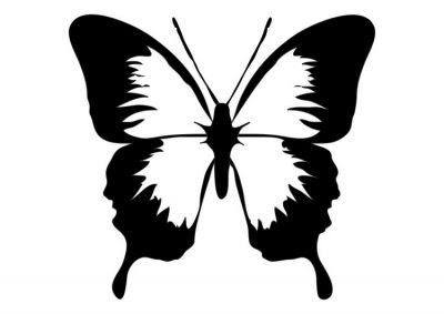 Dibujo De Mariposas Dibujo Para Colorear De Mariposas Dibujos