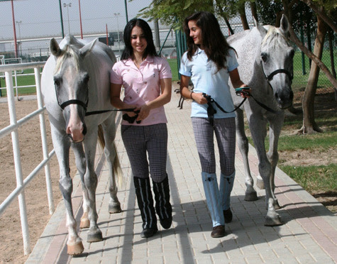 Al Ahli Horse Riding Club Dubai Location Map,Location Map of Al Ahli Horse Riding Club Dubai,Al Ahli Horse Riding Club Dubai accommodation destinations attractions hotels map photos pictures