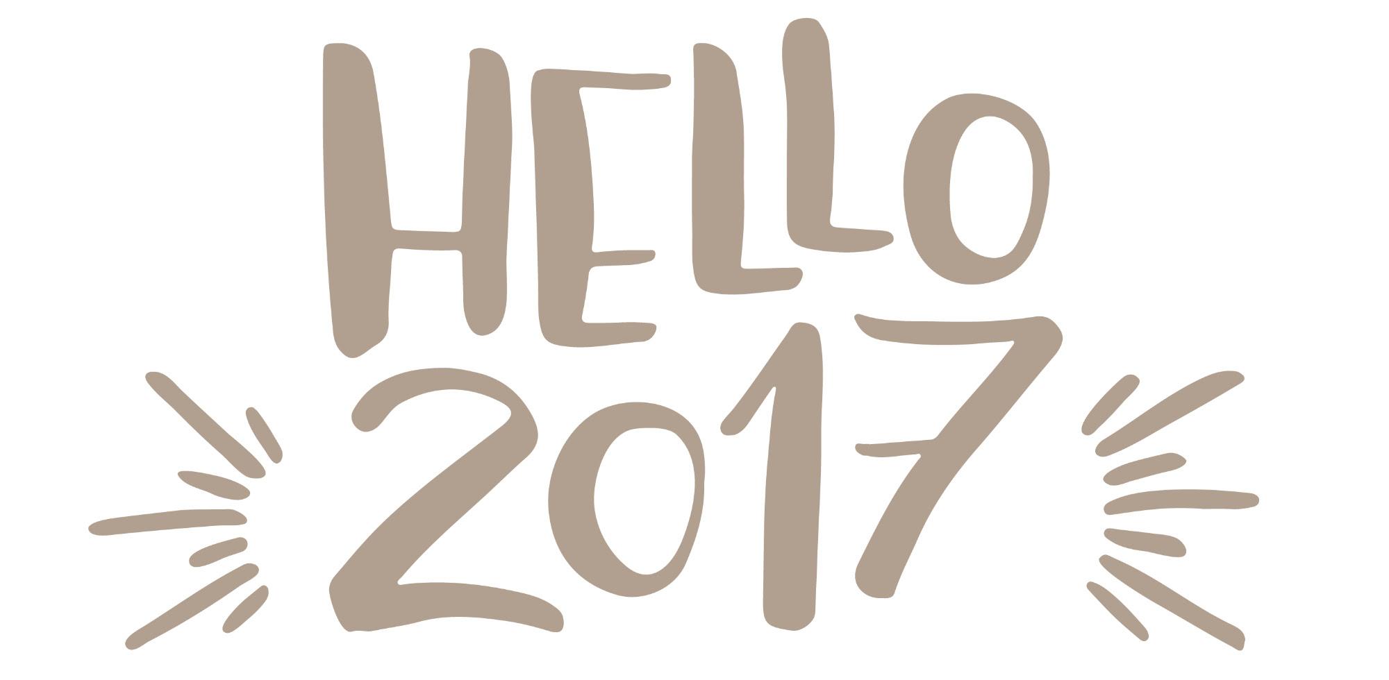 Hello 2017 | angiethefreckledrose.com