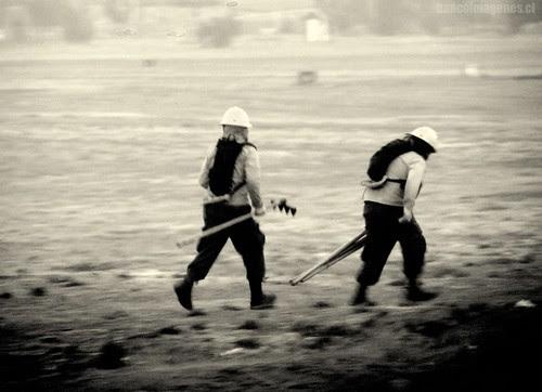 BRIGADISTAS CONAF by PCM, El Flickr de Chile || BANCOIMAGENES.CL