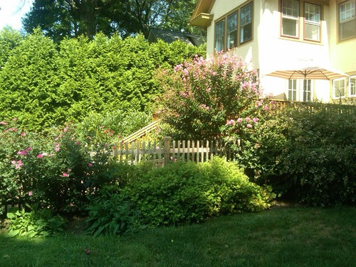 Garden Design and Installation, Glenside, Pa traditional landscape