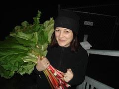 The Rhubarb Thief 4