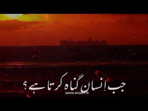 tariq jameel whatsapp status newtariq jameel whatsapp status full screen