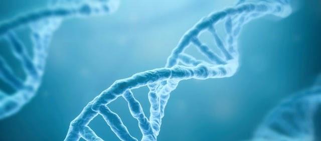 Γάλλος έφηβος βιοχάκερ μετέγγραψε  σε DNA το Κοράνι και τη Βίβλο  και τα έβαλε στο σώμα του… με ένεση