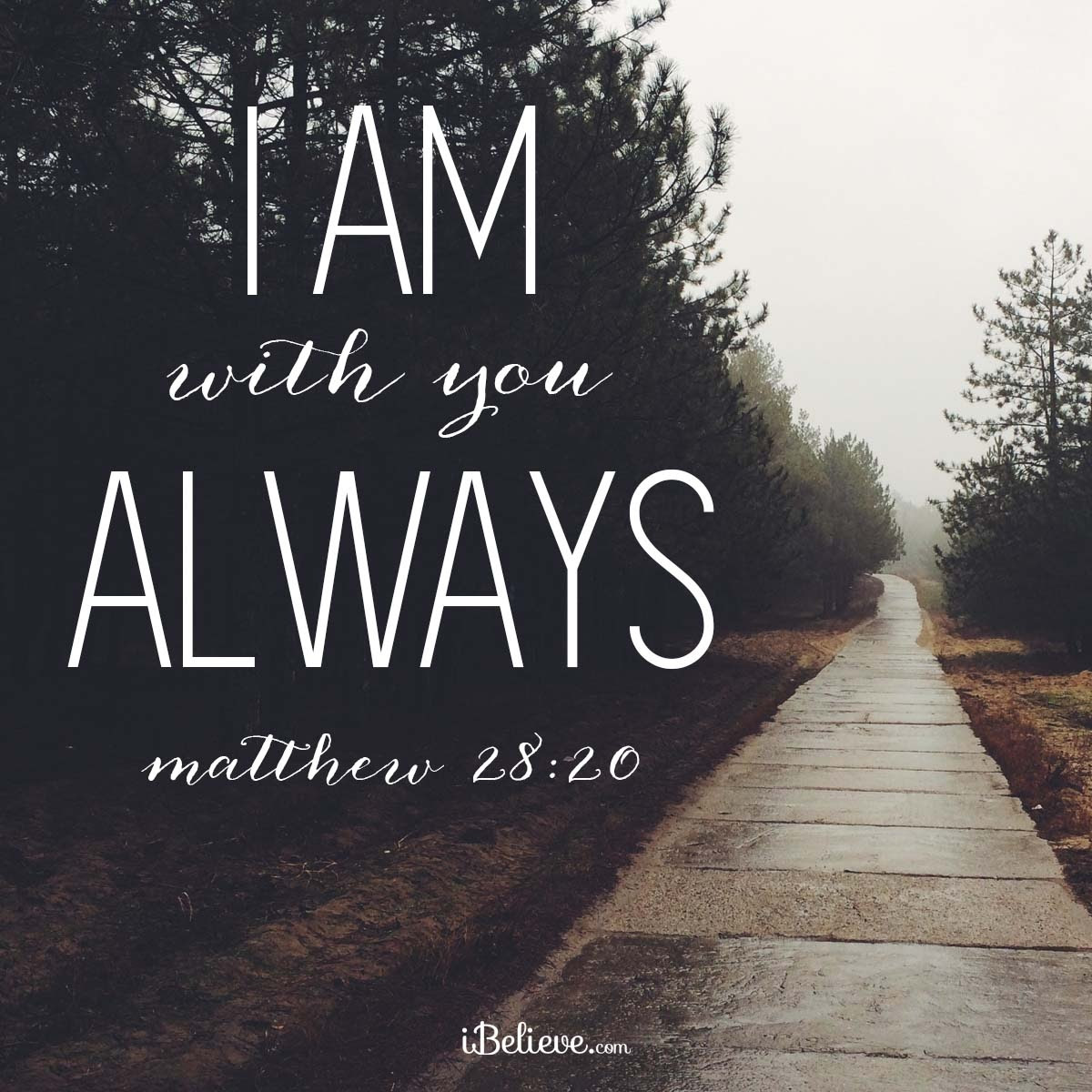 I Am With You Always Your Daily Verse