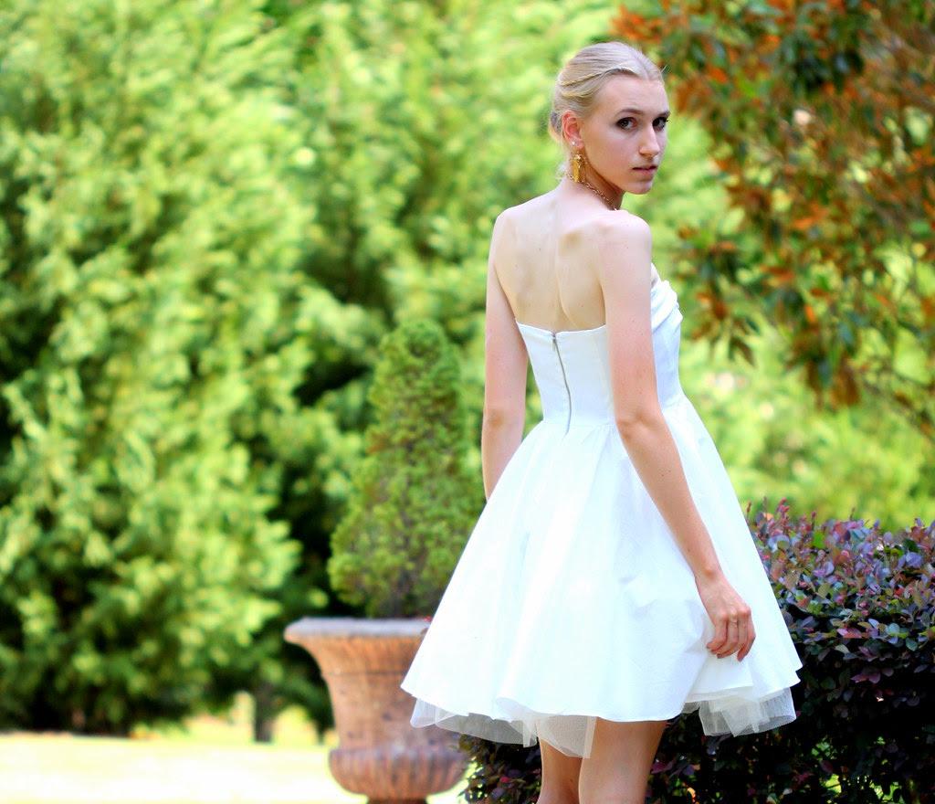 Swan Princess9