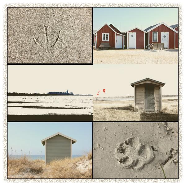Sand-i-Skanör