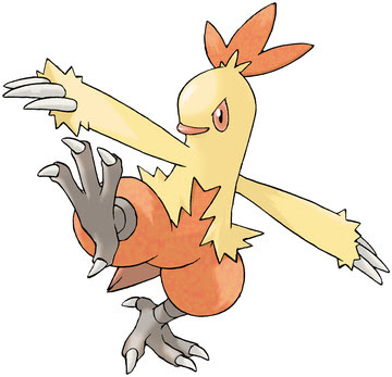 Combusken artwork by Ken Sugimori