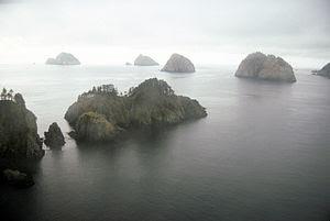 English: Chiswell Island Group, Gulf of Alaska...