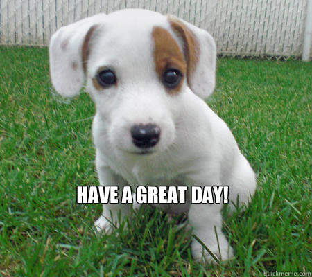Have A Great Day Cute Puppy Of Death Quickmeme