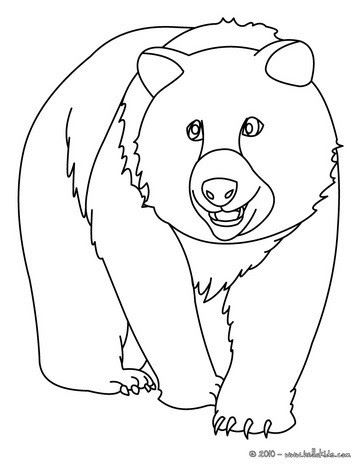 sketching brown bears | Bear Coloring Pages | Bear coloring pages ... | 470x364