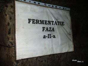 Zona pentru a doua fermentație