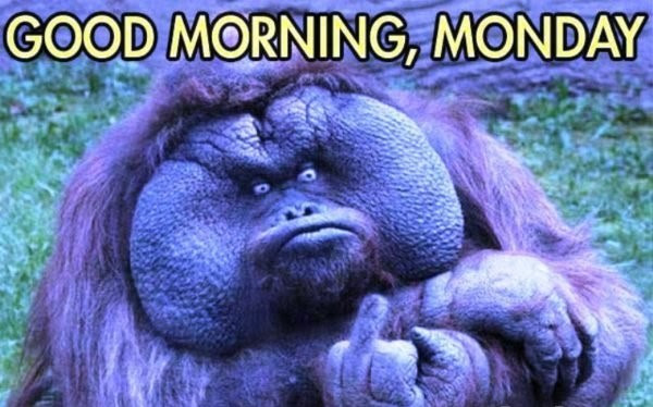 20+ Funny Good Morning Meme Pictures, Graphics & Photos ...
