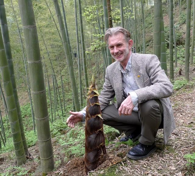 Hans Friederich at a Chinese bamboo plantation. Photo Courtesy of INBAR
