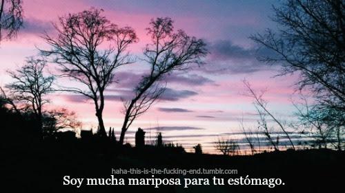 My Edits Frases Frases Cortas Desamor Frases En Español Mariposa