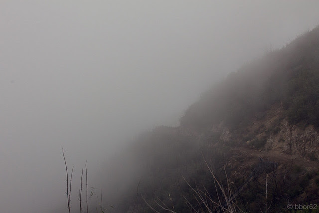 Easter Morning Foggy Hike