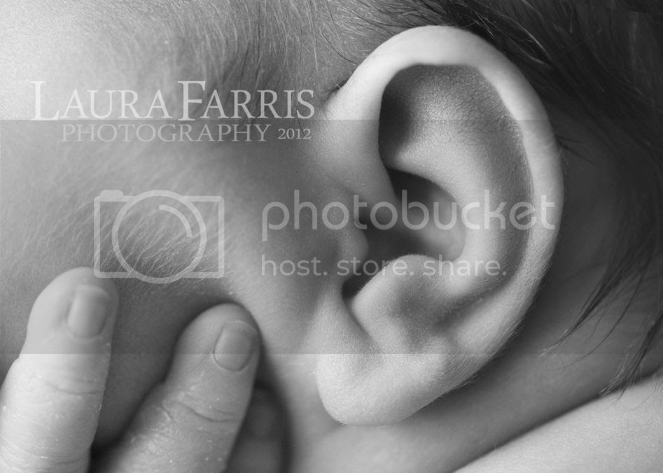 boise area newborn photographers