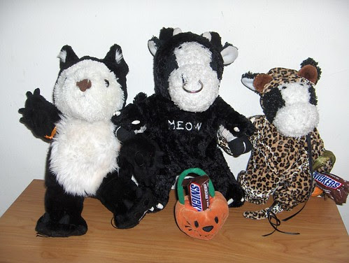 Shelly, Bully, and Marshall are all costumed as cats!