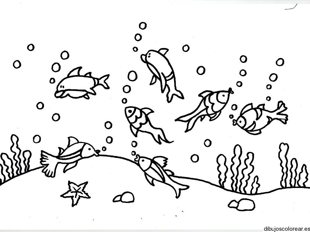 Dibujo De Peces En El Fondo Del Mar
