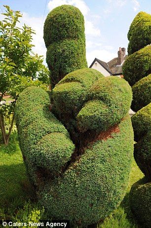 Green-fingered: The carved shrub