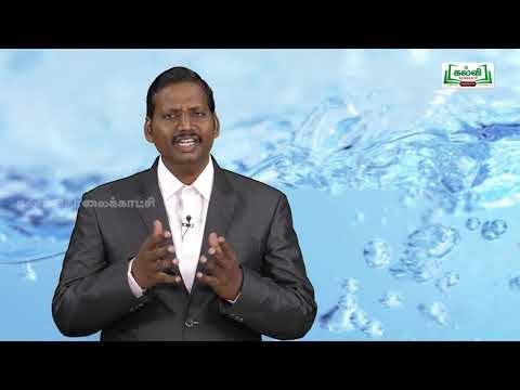 Dal Ak Std9 TM Science Paaimangal Part 02 Progk1 Kalvi TV