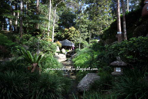 Japanese Garden 03