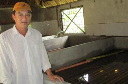 Ông Hoàng bên các bể nuôi lươn.