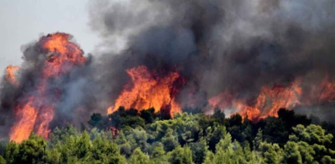 Απίστευτες αναφορές από αλλοδαπούς- «….όλη η Ελλάδα θα καεί»