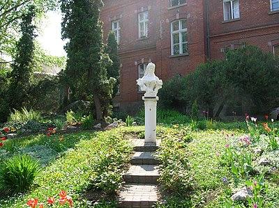 http://upload.wikimedia.org/wikipedia/commons/thumb/0/01/Sissi_statue,_Miskolc,_Semmelweis_Hospital.jpg/400px-Sissi_statue,_Miskolc,_Semmelweis_Hospital.jpg