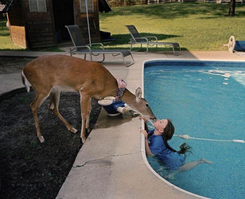 O Mundo de Amelia - A menina que cresceu com os animais e os considera seus irmãos 22