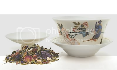 Curious Kingfisher Gaiwan