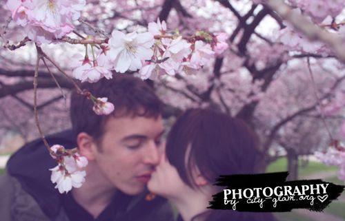 http://i402.photobucket.com/albums/pp103/Sushiina/love3.jpg