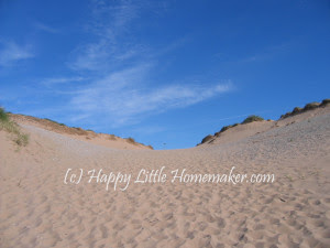 sand-dunes-michigan copy